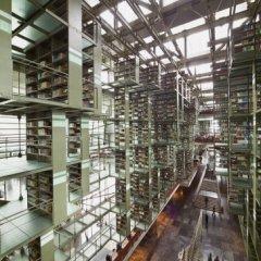 Biblioteca-Vasconselos-6-©Yoshi-Koitani