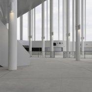 Nouveau Stade de Burdeos 20