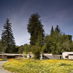 Creekside Residence 8