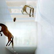 Kistefos Museum 14