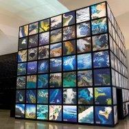 Museo del mañana foto Bernard Miranda Lessa 11