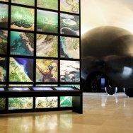 Museo del mañana foto Bernard Miranda Lessa 12