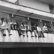 Bauhaus online 2