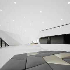 Delugan Meissl, Sala de conciertos de Tirol, tecnne