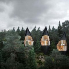 Tree-Houses-Peter-Pichler-tecnne-12