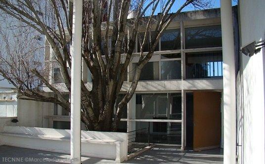 Le Corbusier, el árbol y el bosque
