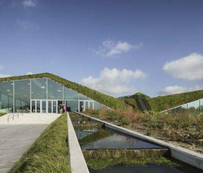 Mímesis ecológica del museo